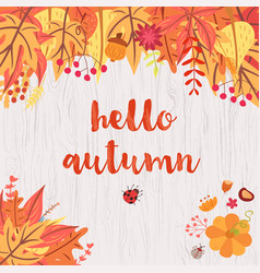 Hello autumn design vector