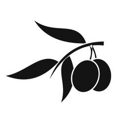 Olive tree branch with two olives icon vector image