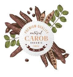 round emblem with hand drawn carob pods and leaves vector image