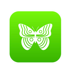 Stripped butterfly icon digital green vector