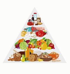 Food pyramid vector