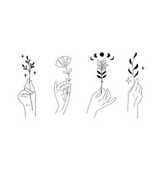 Hands set with flowers and plants graceful female vector