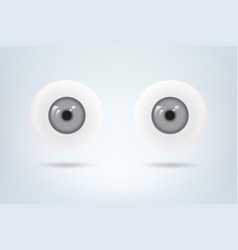 Human grey eyes balls pupil medical visual vector