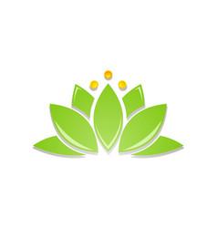 Lotus flower green beauty logo vector