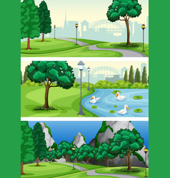 set of urban park vector image