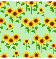 Summer flowers sunflowers seamless pattern vector image
