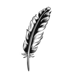 Vintage black feather vector