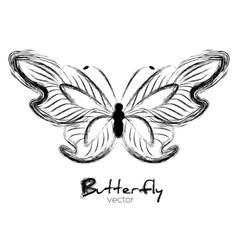 Grunge butterfly painted with ink vector image