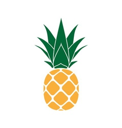 Pineapple with leaf yellow vector