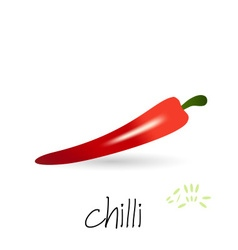 red hot chilli pepper with seeds and shadow eps10 vector image