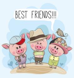 Three cute cartoon pigs and a bird vector
