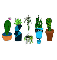 cactus doodle style isolated vector image