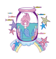 Beautiful mermaid in mason jar fairytale character vector