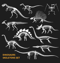 Dinosaurs skeletons chalkboard icons set vector
