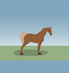 horse standing in nature vector image