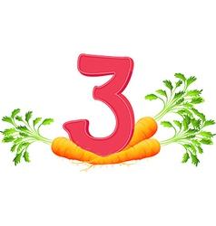 Three carrots vector image vector image