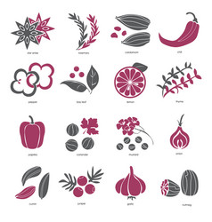 Web icon set - spices condiments and herbs vector