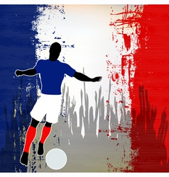 Football France vector image vector image