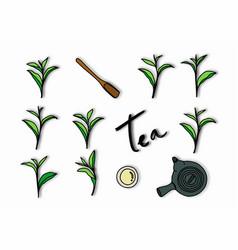 tea leaves tea cup tea pot and wooden scoop vector image
