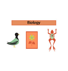 Assembly flat icons biology frog bird flowers vector
