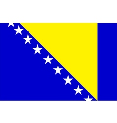 Flag of Bosnia and Herzegovina vector image
