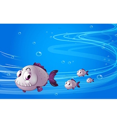 Four piranhas under the sea vector image