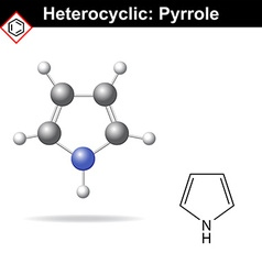 Pyrrole five-membered organic heterocycle vector