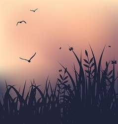 Sunset with grass and flying seagulls vector