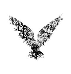 Trees silhouettes raven vector