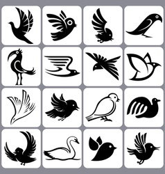 bird icons set vector image vector image