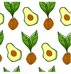 Avocado ripe fruit with seed growing plant print vector