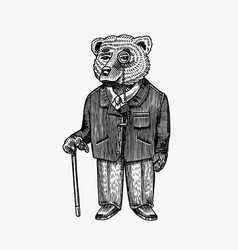 bear with monocle and walking stick in a jacket vector image