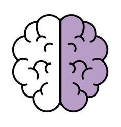 brain isolated icon vector image
