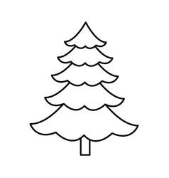 cartoon pine tree natural plant conifer image vector image