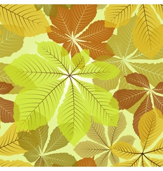 Chestnut leaves vector
