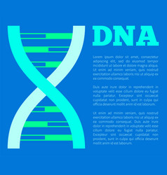 dna poster with headline vector image