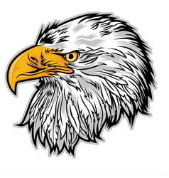 Eagle head americas logo mascot on white vector