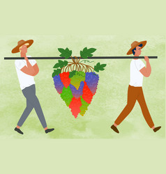 Farmers carrying grapes bunches berries harvest vector