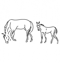 foal and mare vector image vector image