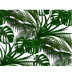 jungle green leaves of tropical palm trees vector image vector image