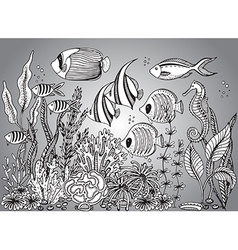 monochrome hand drawn with seashell vector image