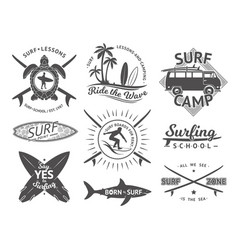 elements for labels or badges surfing vector image vector image