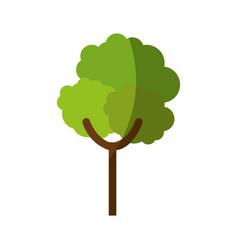 nature tree symbol vector image vector image