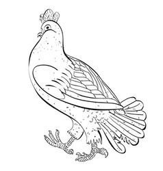 cartoon image of pigeon vector image