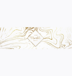 design long banner with marble texture web vector image