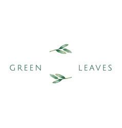 green leaves logo vector image