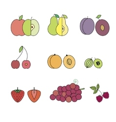 Flat Design Isolated Fruit Icon Set vector