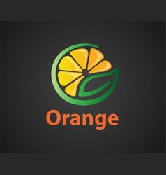 Natural half fruit orange logo design inspiration vector