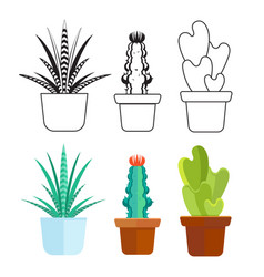 popular succulents line and cartoon set - home vector image