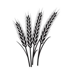 wheat plant grain icon vector image